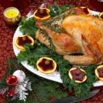Chicken Food desktop wallpaper