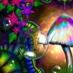 Mushroom Artistic PC wallpapers