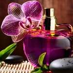 Perfume Photography high quality wallpapers