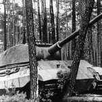 Tiger II new wallpaper