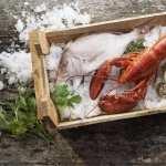 Seafood 2017