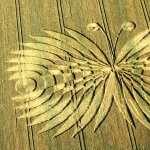 Crop Circles wallpapers hd
