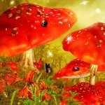 Mushroom Artistic images