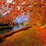 Fall Photography 1080p