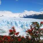 Glacier free