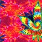 Marijuana Artistic free wallpapers