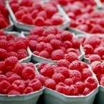Raspberry wallpapers hd