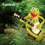 The Muppet Show pic