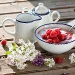 Yogurt photos