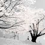 Winter Artistic hd desktop