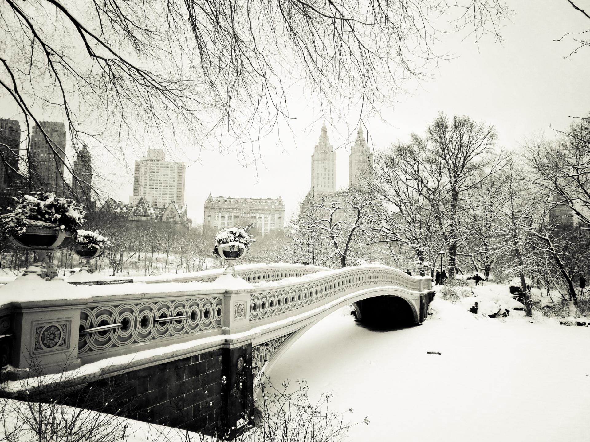 Central Park wallpapers HD quality