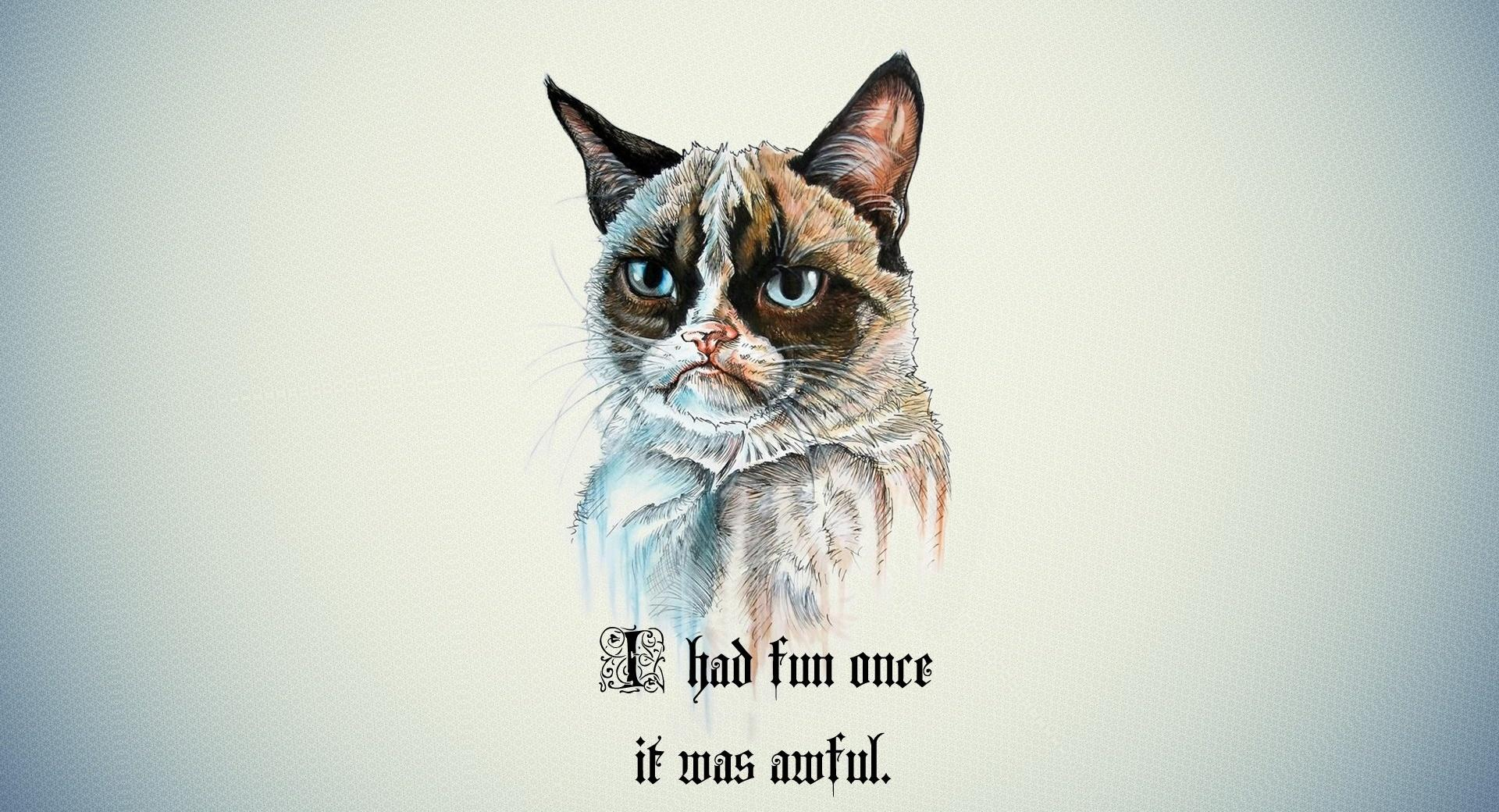 I Had Fun Once It Was Awful Cat wallpapers HD quality