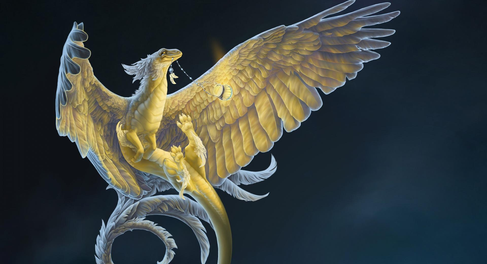 Night Dragon wallpapers HD quality