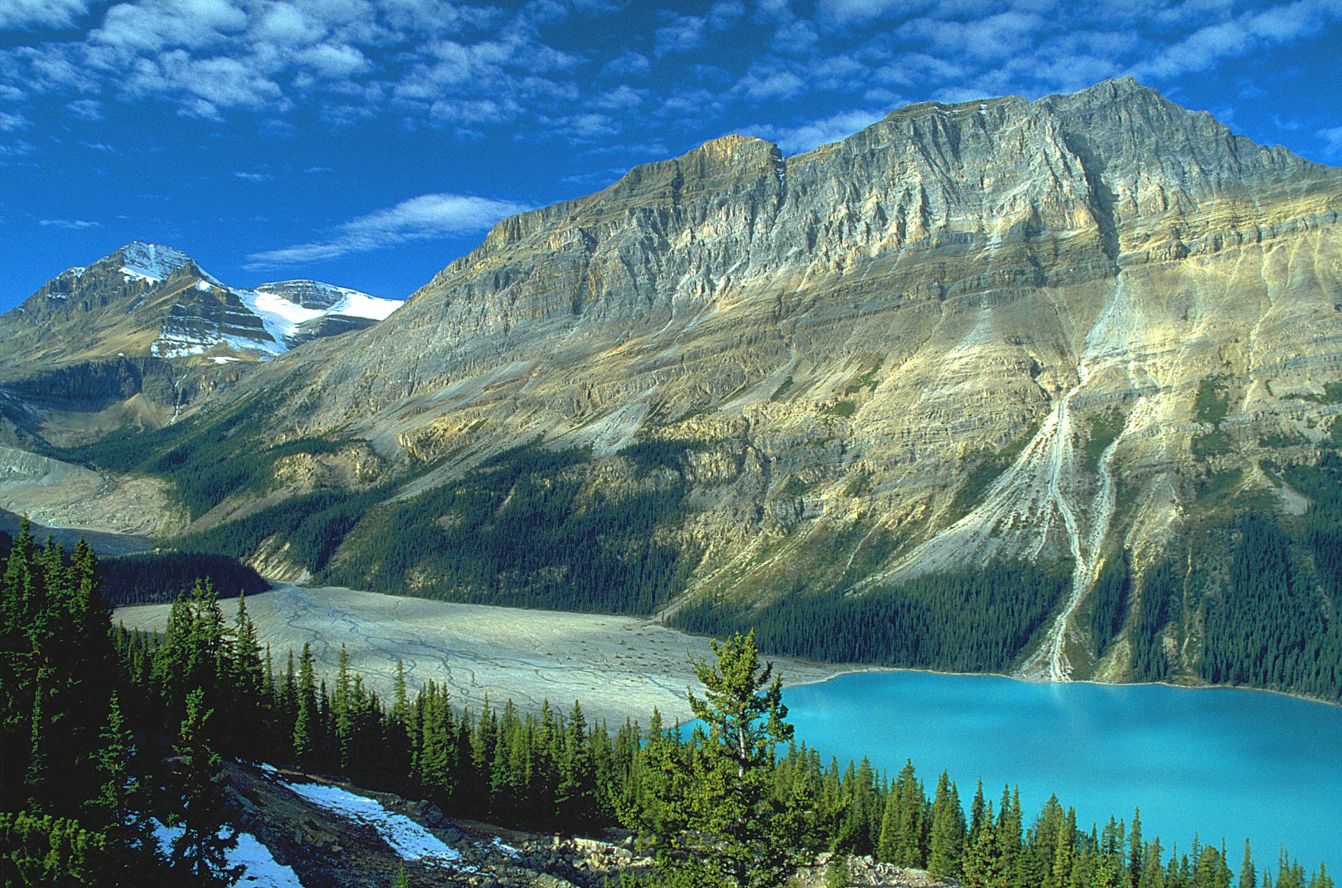 Peyto Lake wallpapers HD quality