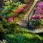 Garden high definition wallpapers