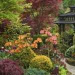 Garden hd wallpaper