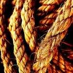 Rope widescreen