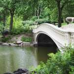 Bridges background