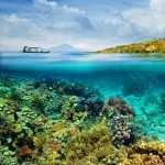 Underwater hd desktop