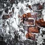 Brick images