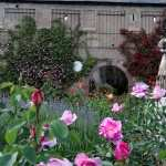 Garden free wallpapers