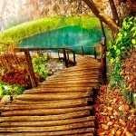 Boardwalk image