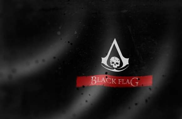 ASSASSINS C BLACK FLAG
