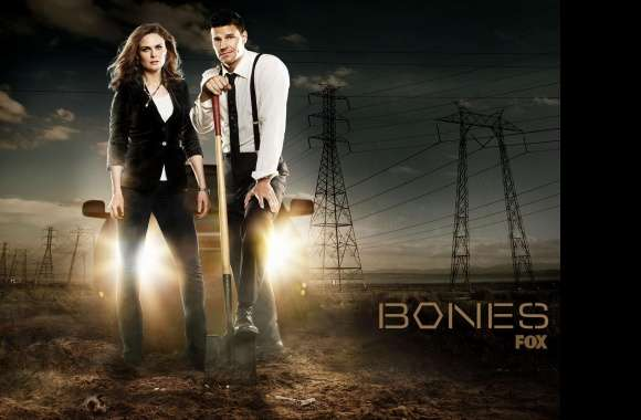 Bones wallpapers hd quality