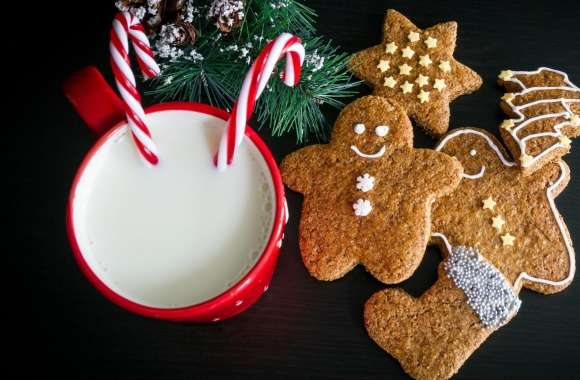 Christmas Cookies and Milk for Santa Claus