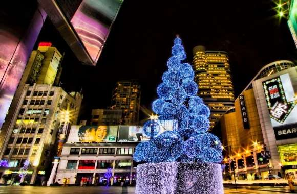 Christmas Tree, City