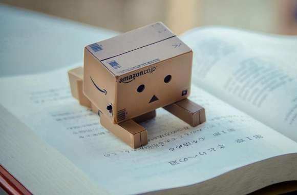 Danbo Reading Book