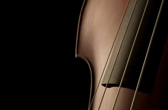 Double Bass Close Up wallpapers hd quality