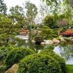 Garden free
