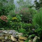 Garden wallpapers for android