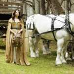 Legend Of The Seeker hd