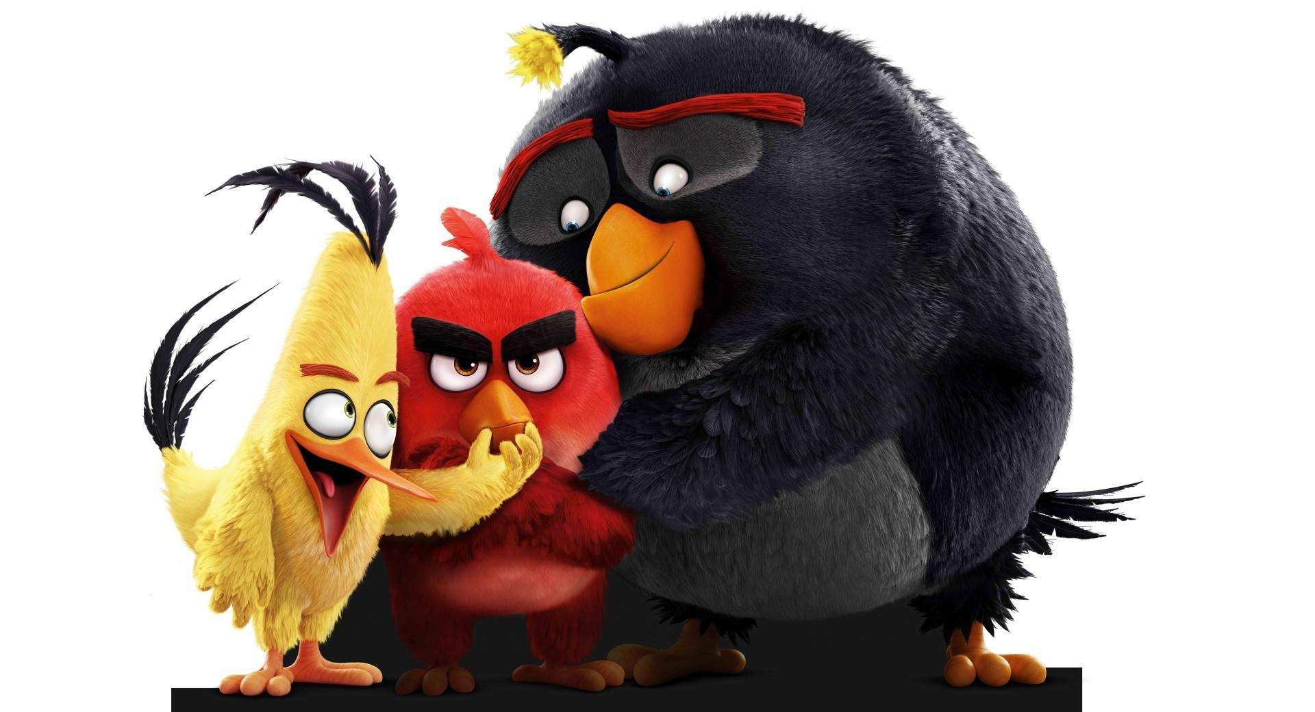 Angry Birds Movie 2016 wallpapers HD quality