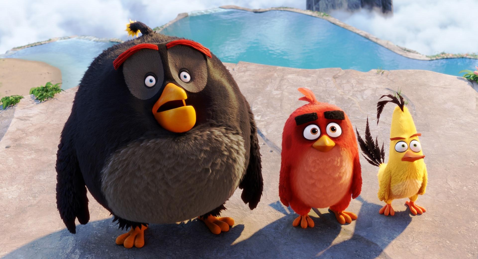 Bomb, Red, Chuck - Angry Birds wallpapers HD quality
