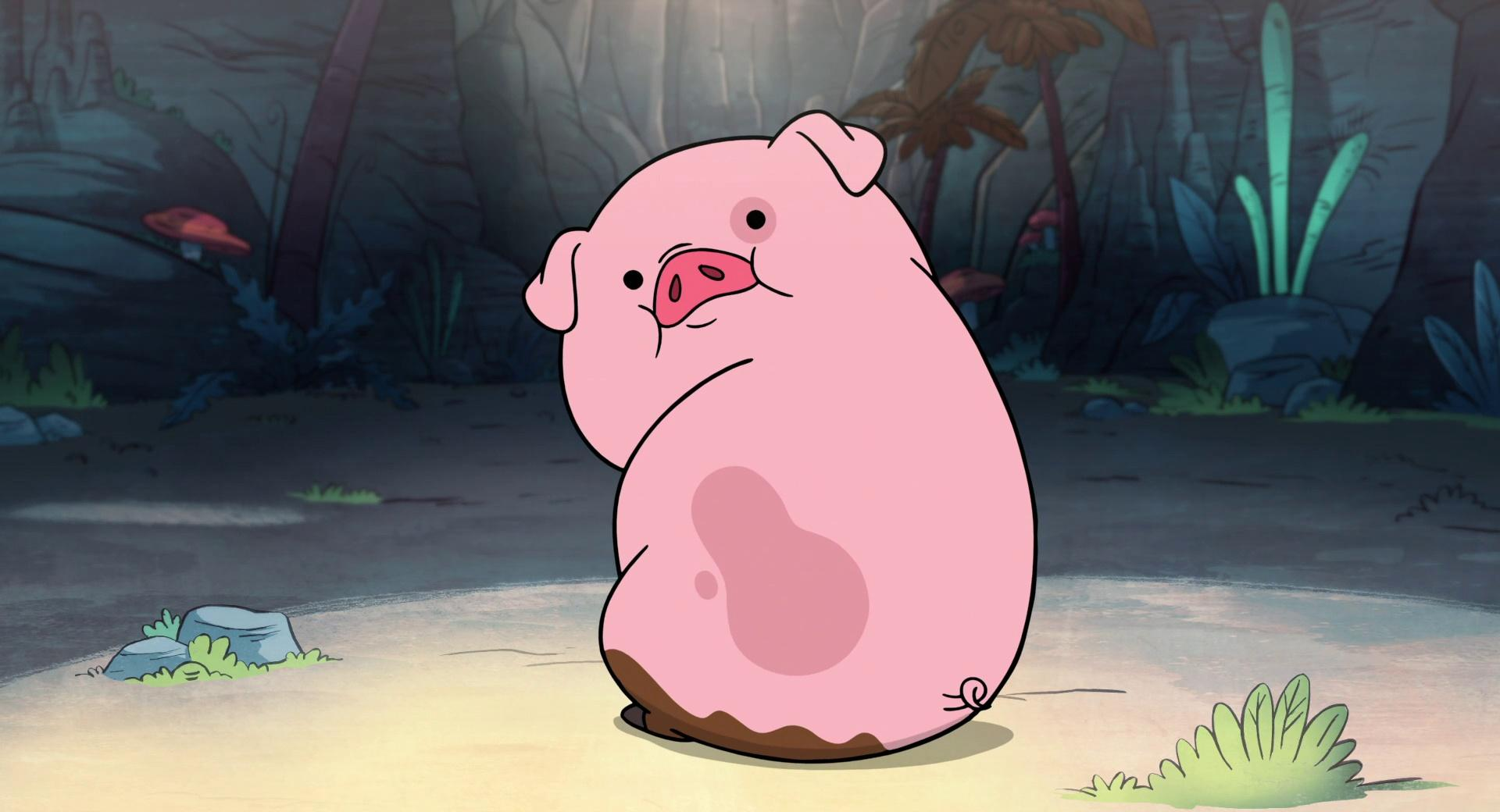Cute Funny Piggy wallpapers HD quality