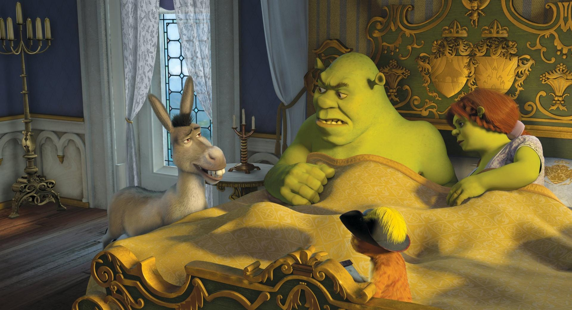 Donkey, Puss in Boots, Shrek and Princess Fiona wallpapers HD quality