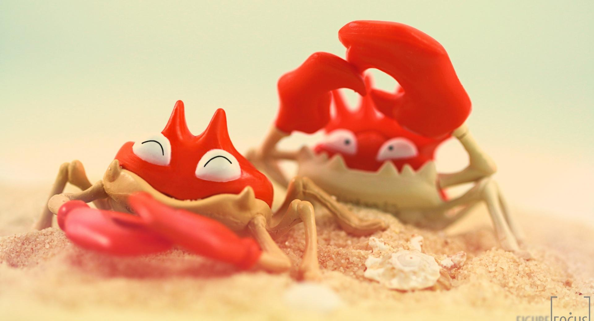 Funny Crabs wallpapers HD quality