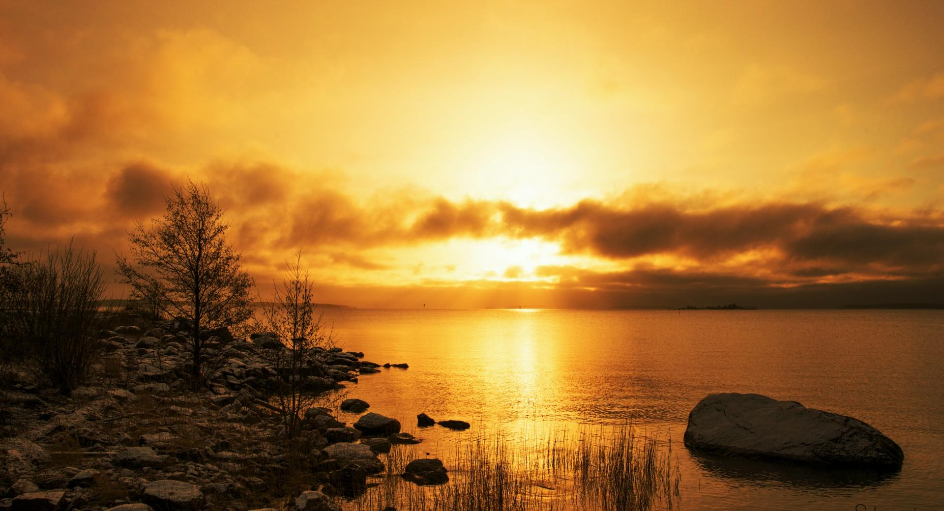 Golden Morning wallpapers HD quality