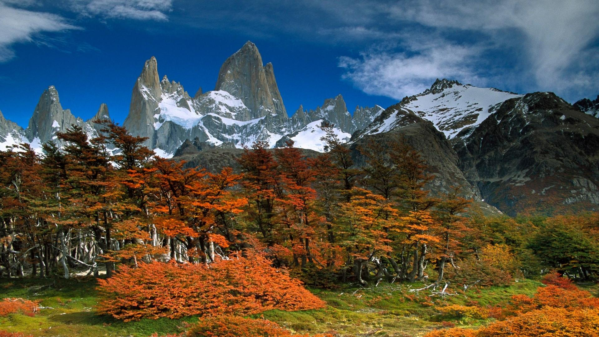 Mount Fitzroy wallpapers HD quality