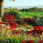 Golf Course high quality wallpapers