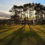 Golf Course hd