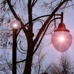 Lamp Post download wallpaper
