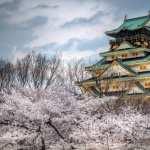 Osaka Castle wallpapers