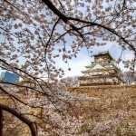 Osaka Castle new wallpaper