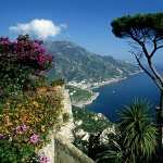 Amalfi new wallpaper