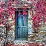Door full hd