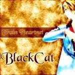 Black Cat new wallpapers